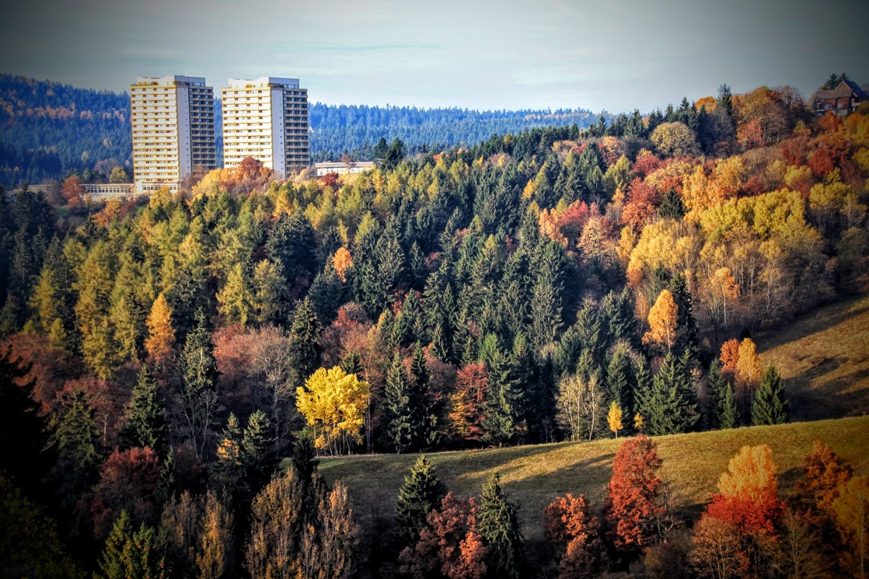 hohegeiss-panoramic-herbst